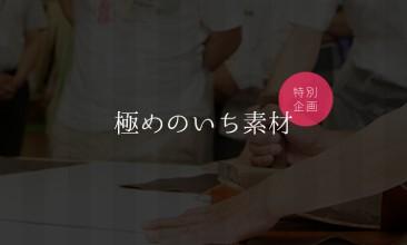 91_kiwamenoichisozai